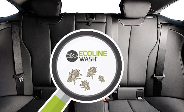 Il vapore igienizza i sedili dell'auto ed elimina i batteri